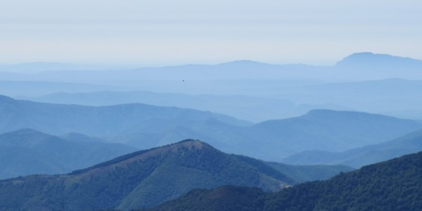 Trésor du Mont Aigoual Groupe